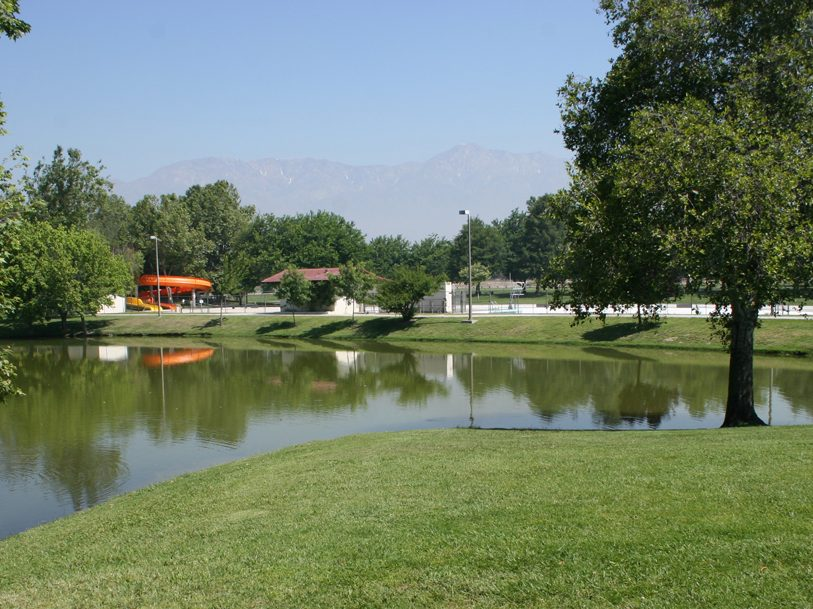 Guasti lake view