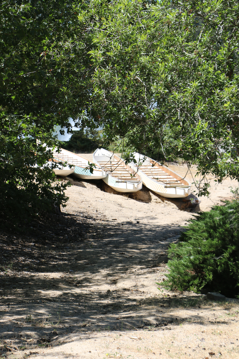 4 boats on the shore