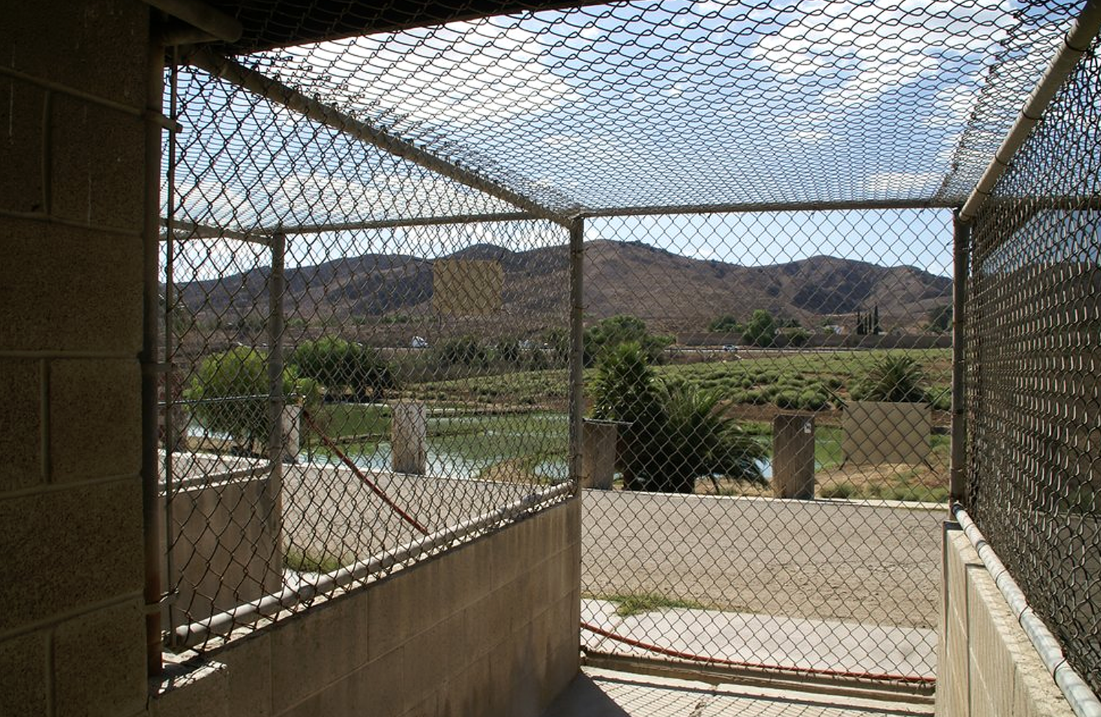 Inside view of the Prado dog park kennel overlooking grass and mountains in the background.