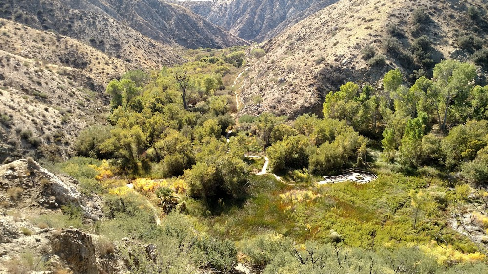 top view of Big Morongo Canyon