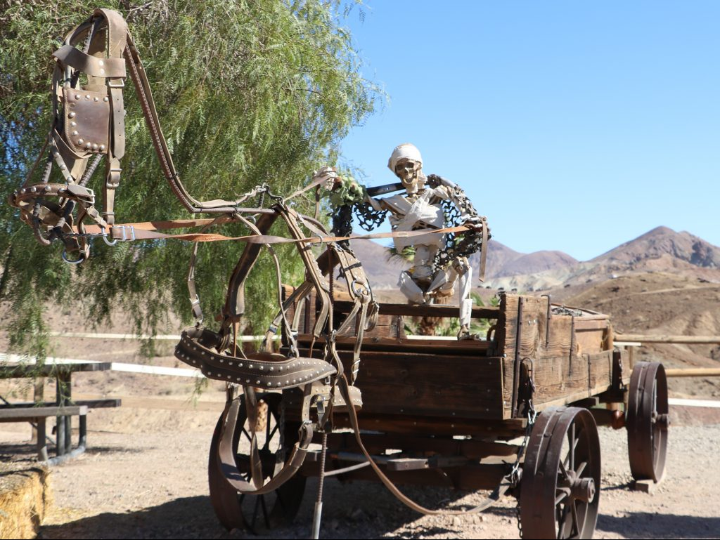 Skeleton driving a Haunted Wagon at Calico
