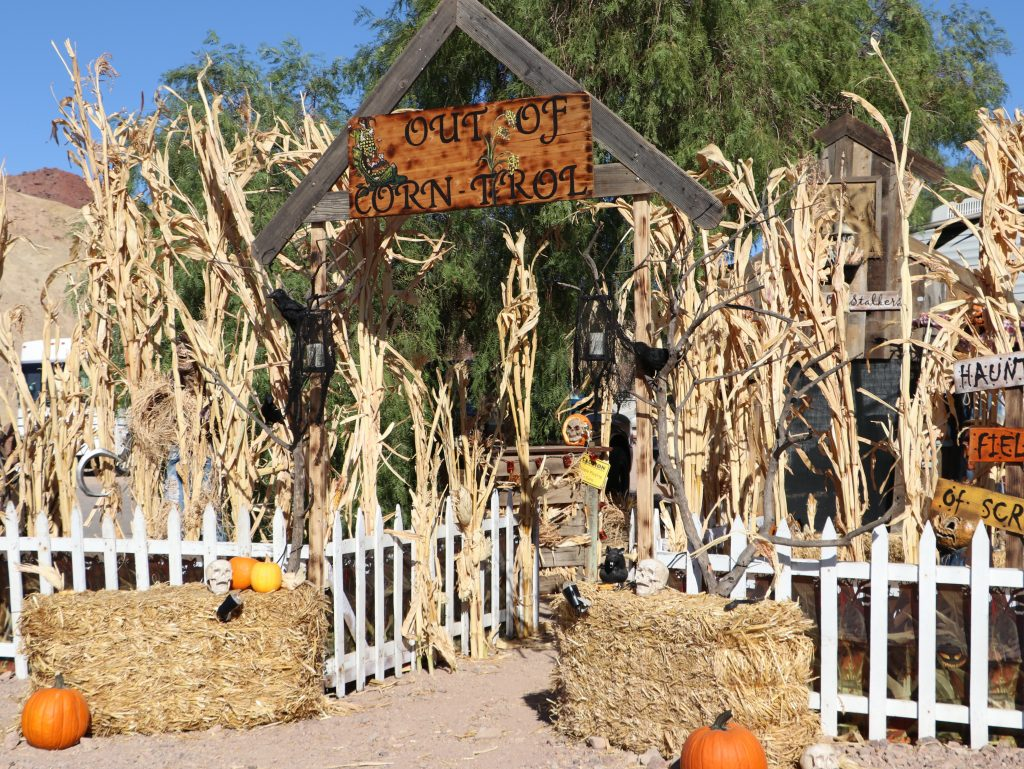 Haunted Corn Maze at Calico