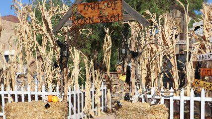 Haunted Corn Maze at Calico