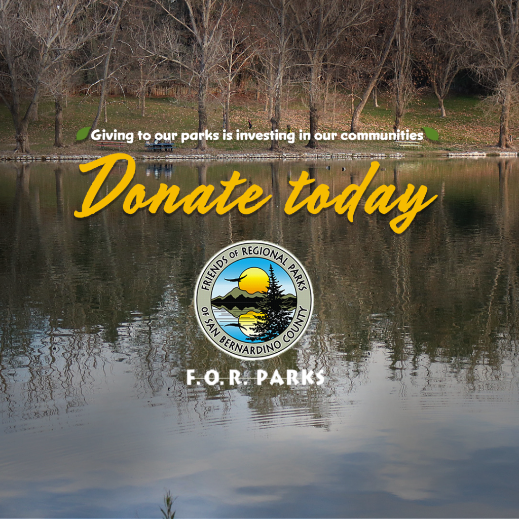 Donate today graphic with Yucaipa lake background and Friends of Regional Parks logo. The phrase Giving to our parks is investing in our communities is flanked by two green leafs.